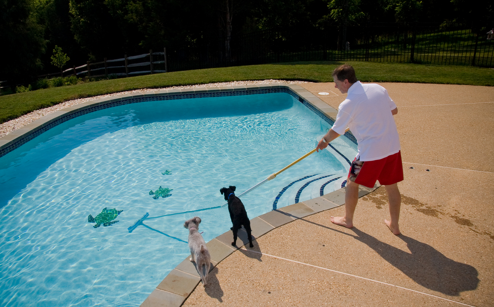 Sfaturi pentru intretinerea oricarui tip de piscina – de la curatare pana la dezumidificare
