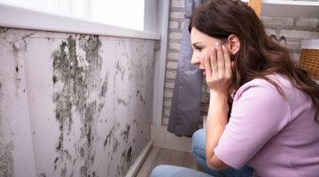 Cum scapi rapid de umezeala peretilor in cazul unei inundatii in casa