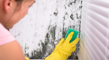 Trucuri eficiente pentru eliminarea mucegaiului din locuinta ta